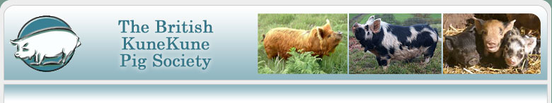 The British Kunekune Pig Society